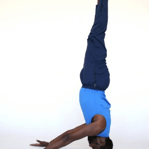 advanced yoga training  yogaskills