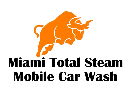 miami total steam auto detailing and car wash miami total steam auto detailing and car wash. Black Bedroom Furniture Sets. Home Design Ideas