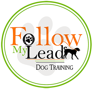Follow My Lead Dog Training