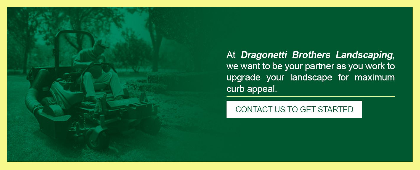 Contact Dragonetti Brothers for Landscaping Services