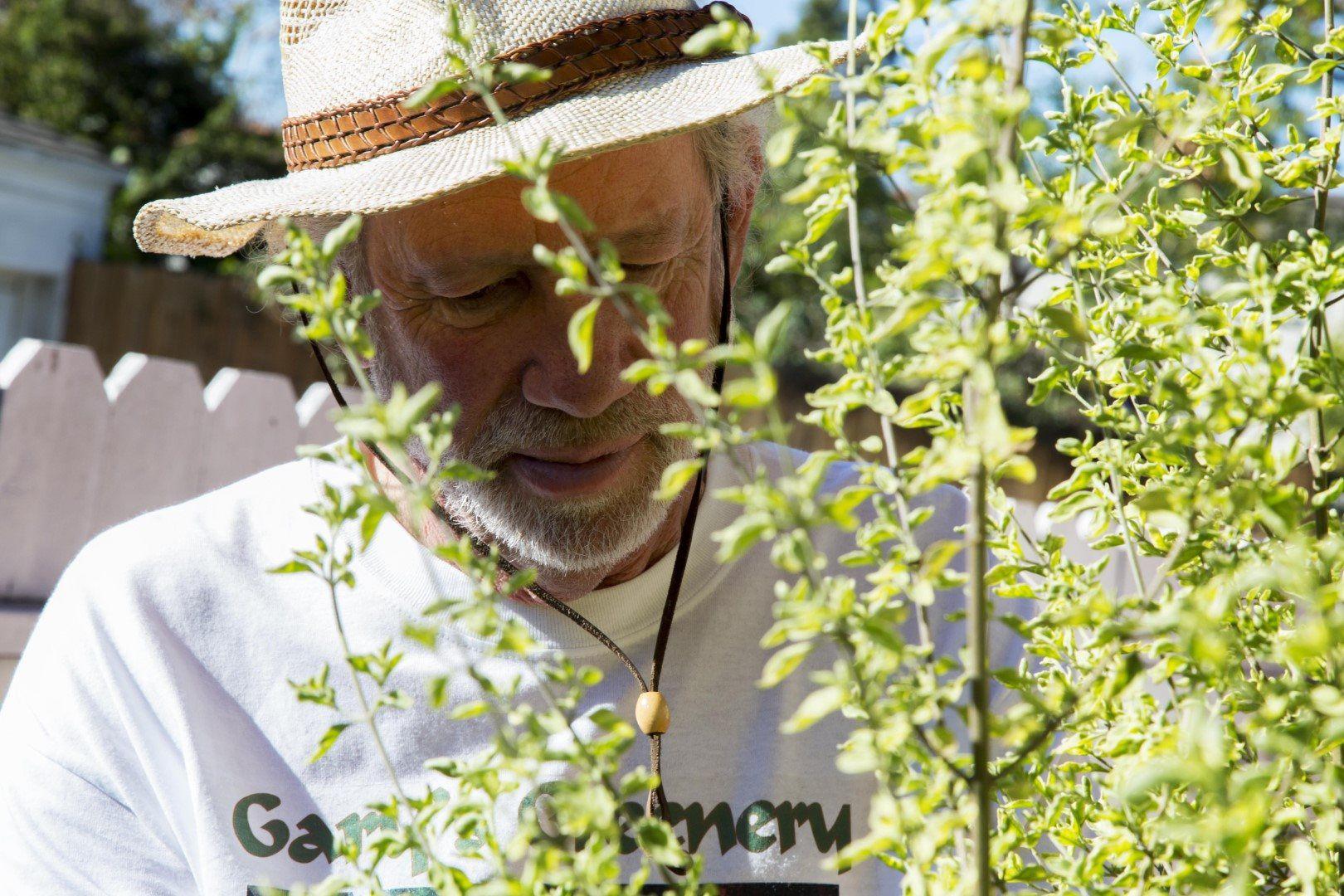 Gary's Greenery