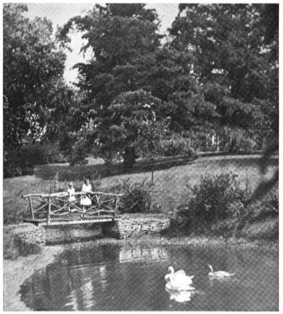 JC Whitehouse's garden in 1920