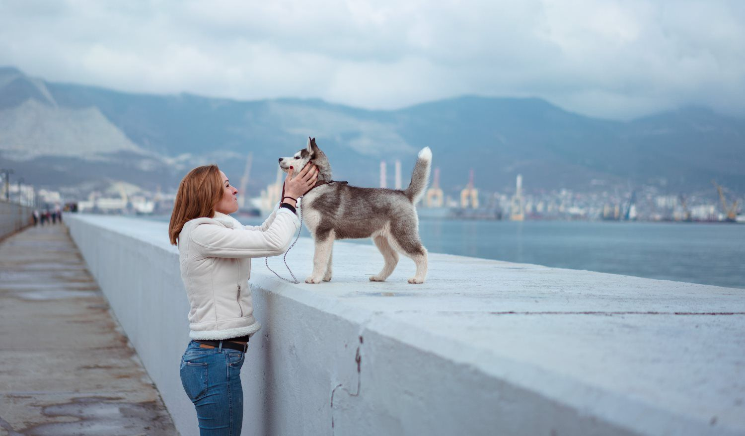 dog and owner on a walk