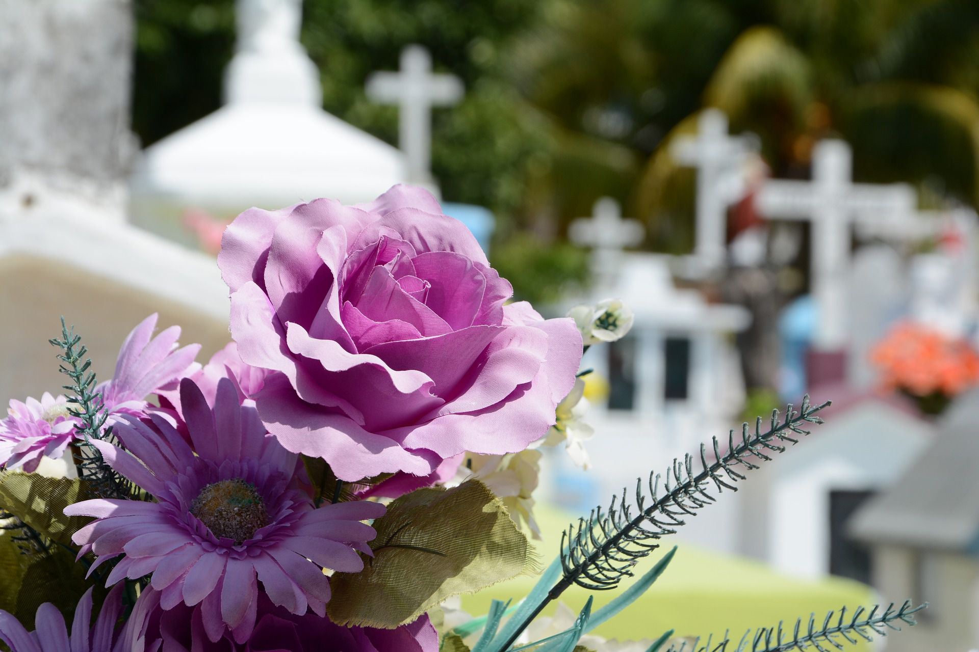 Express your sympathy with these 4 creative and affordable express your sympathy with these 4 creative and affordable alternatives to funeral flowers izmirmasajfo