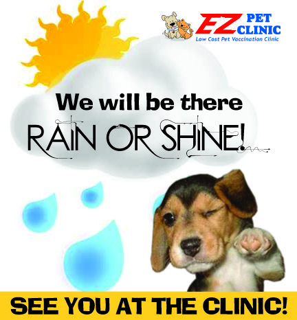 Florida Events - EZ Pet Clinic