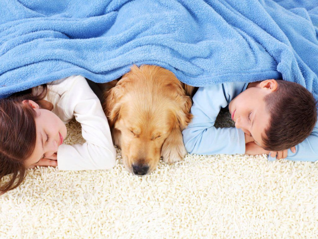 children and dog sleeping on the carpet