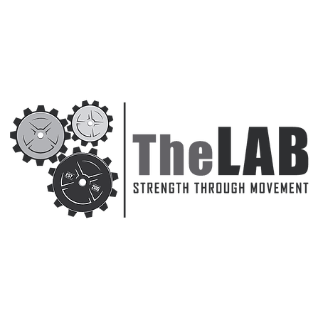 The Lab Basketball Academy Private Training Group Training
