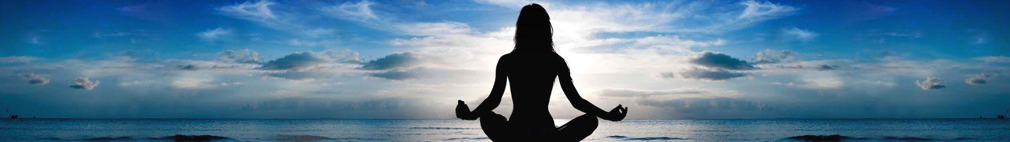 Disconnect To Reconnect Florida Zen Den Yoga School And Retreat Center