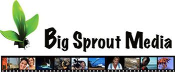 Big Sprout Media logo