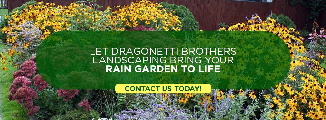 Dragonetti brothers Rain Garden Services