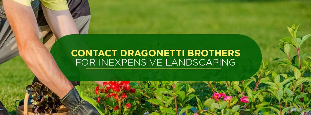 Affordable Landscaping Services from Dragonetti Brothers