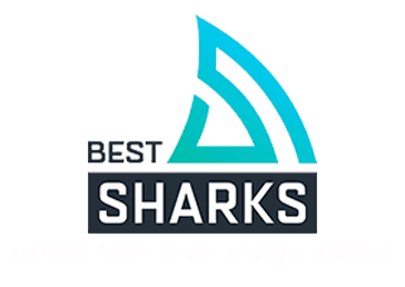 best sharks logo