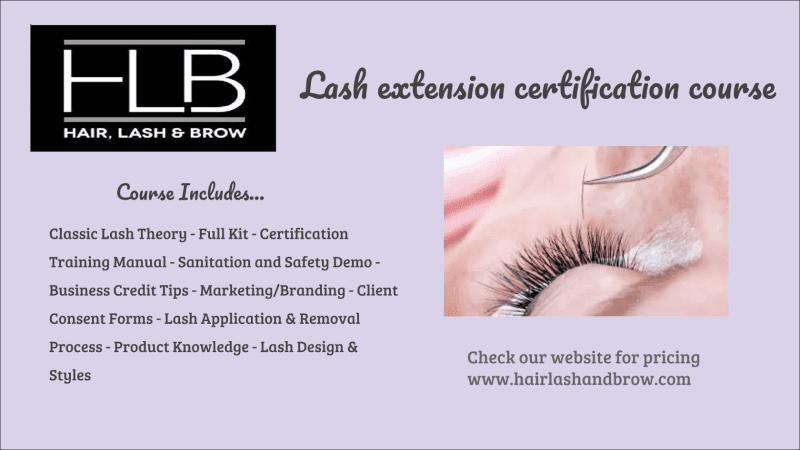 lash training - hair, lash & brow