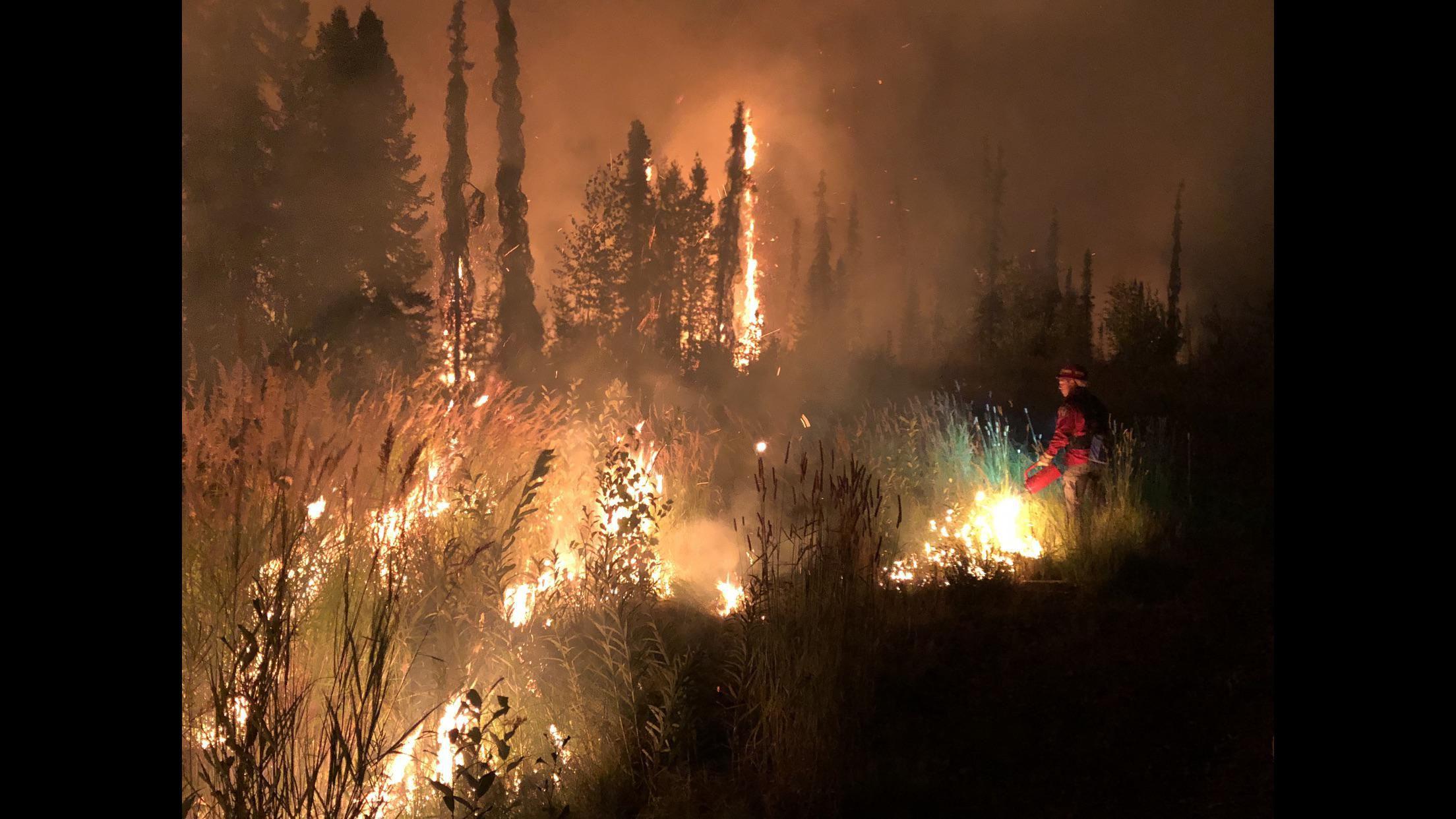 McKinley Fire 2019.jpg