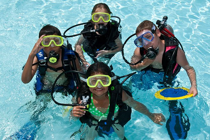 PADI Seal Team (8 yrs+) - Scuba at DiveandPhoto com