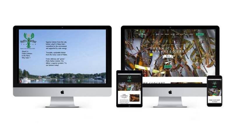 Business Website Design Mopro - Proservice hawaii