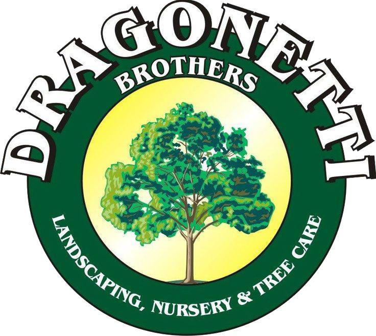 Vincent dragonetti relationships dating