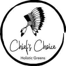 CCHG Logo