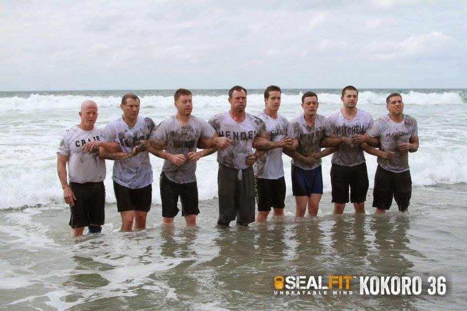 sealfit program