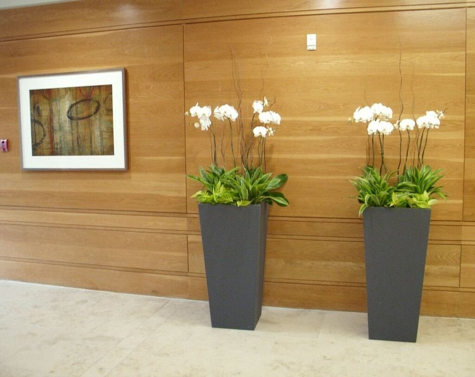 Home interior plant design for Interior designs with plants